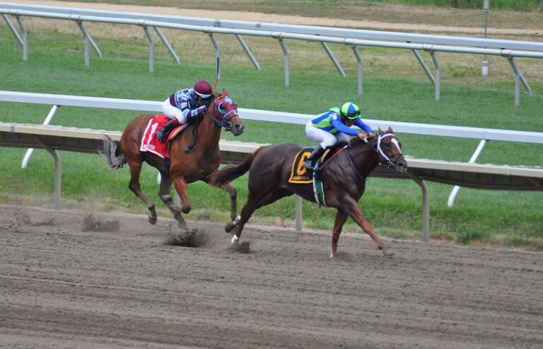 Jockey shocks horse; gets 10 year ban